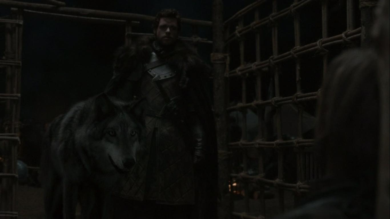 Watch Dogs  Wind Rider